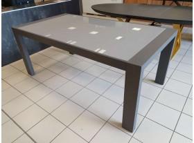Table Grise et plateau verre trempé 190/245/300cm